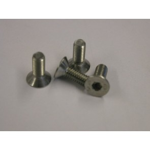 Disc securing screws